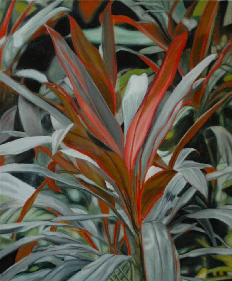 Plantes exotiques dans un jardin